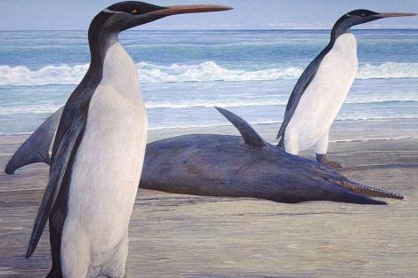 Ilustración que muestra a dos pingüinos y un delfín de hace 25 millones de años. | Chris Gaskin / Otago University