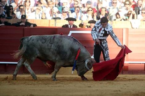 Morante de la Puebla en la Real Maestranza de Sevilla. | Jesús Moron
