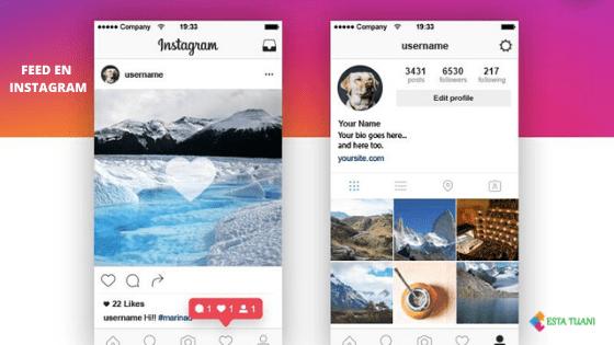 5 Tips para tener un buen feed en Instagram