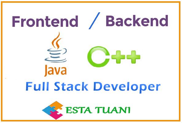 Full stack o Front end, Java o C++, Lenguajes de programación y trabajos, quien gana mas en este siglo 21?
