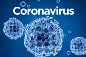 Coronavirus declarada pandemia, pandemia covid-19