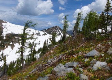 Mt.Crawford 053.JPG