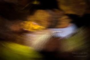 estelas-de-hojas-7