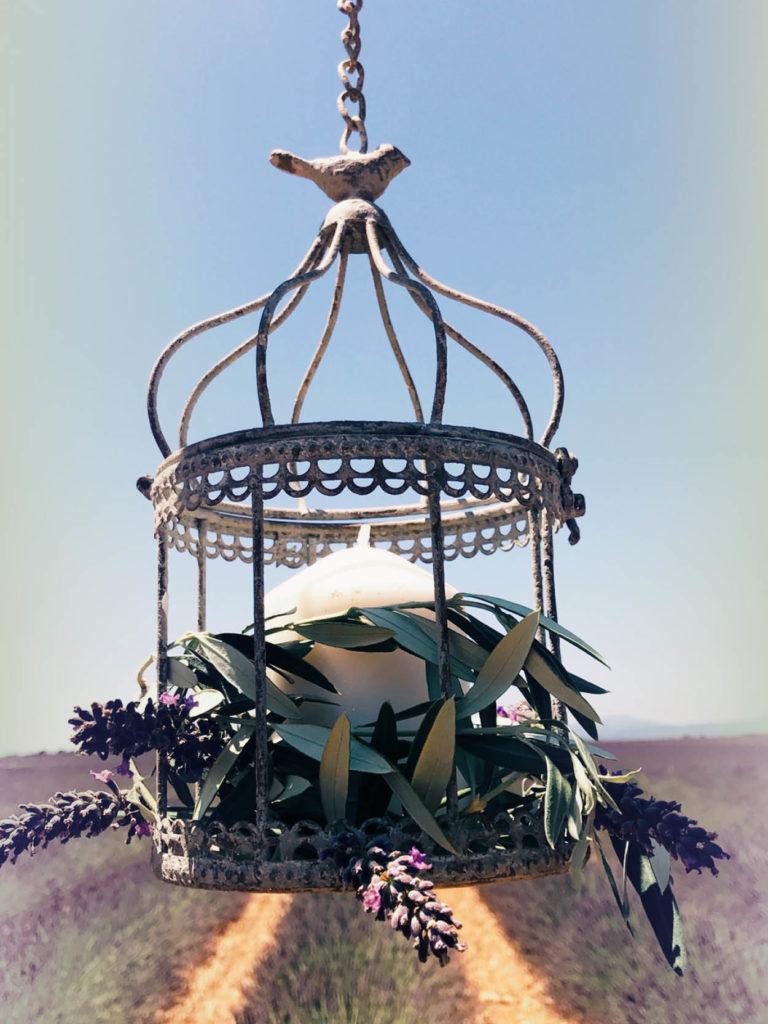 location-cage-oiseau