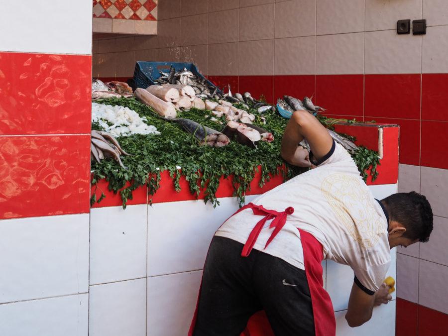Vendeur de poisson à Marrackech, Medina