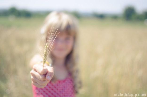 Balade champ de blé 220614 - Estelle R Photographie - Photographe Mariage et Lifestyle Haute saône, Vosges, Lorraine; Franche Comté-3