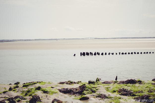 Vendée Août 2014 BD-112