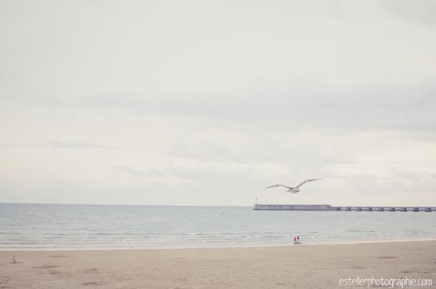 Vendée Août 2014 BD-186