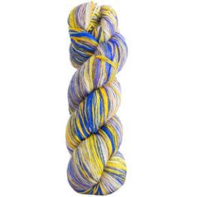 3016 - Iris