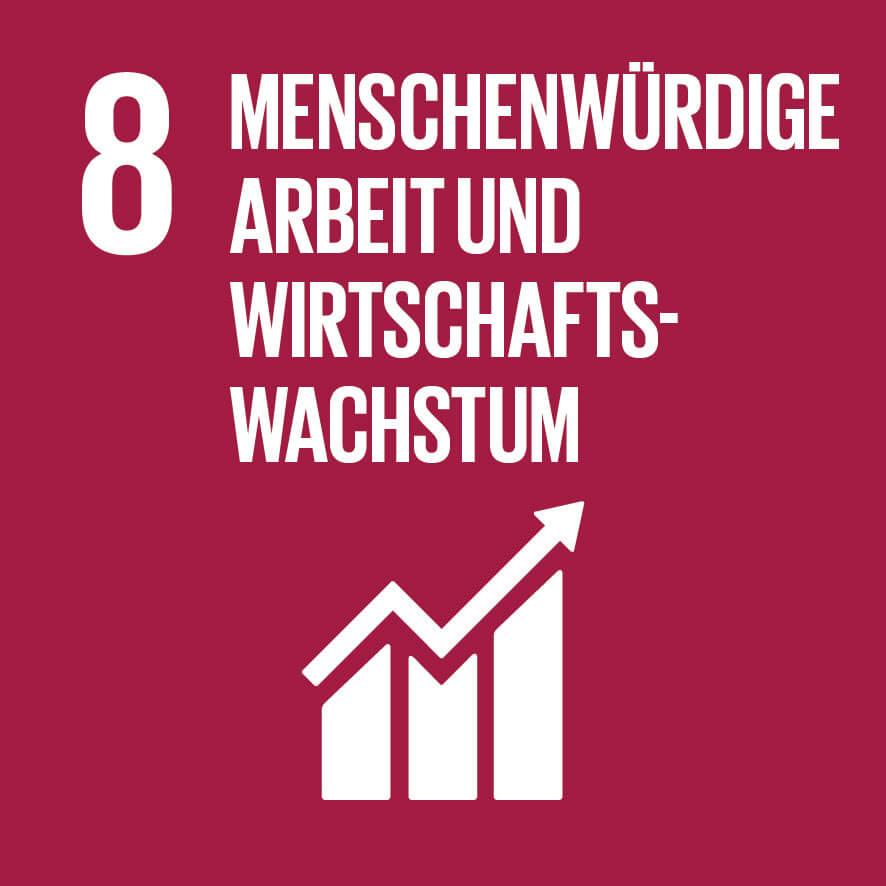 """Das Ziel 8 """"Menschenwürdige Arbeit und Wirtschaftswachstum"""""""