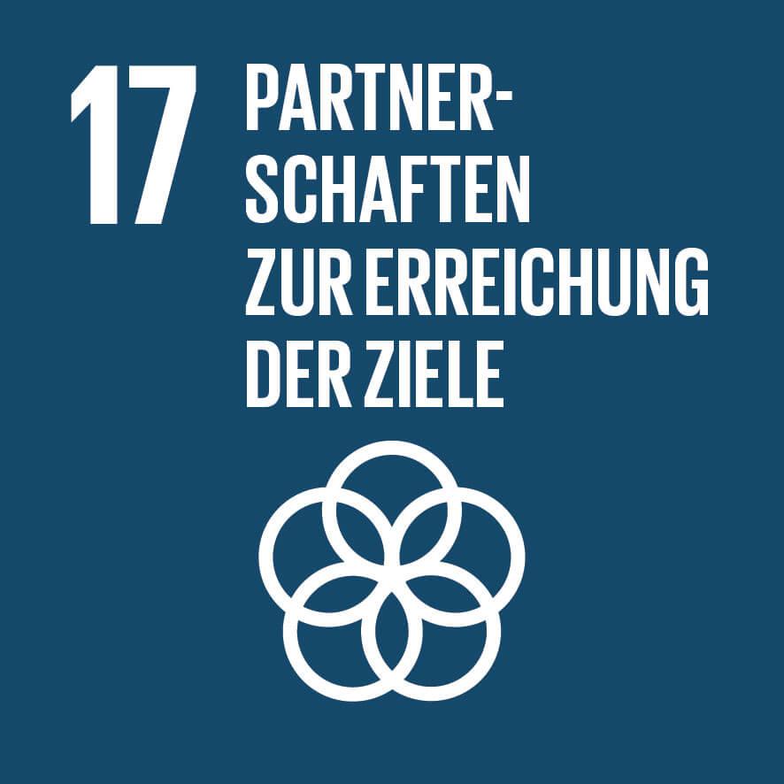 """Das Ziel 17 """"Partnerschaften zur Erreichung der Ziele"""" ist wichtig für unsere Vision, Mission, Werte und Prinzipien."""