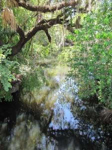 Estero River
