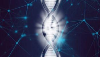 Омоложение клеток человека впервые удалось.