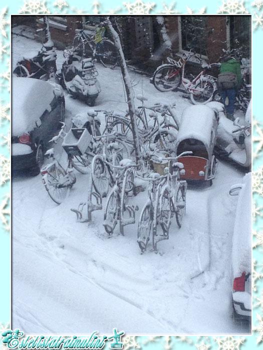 winteriscoming1