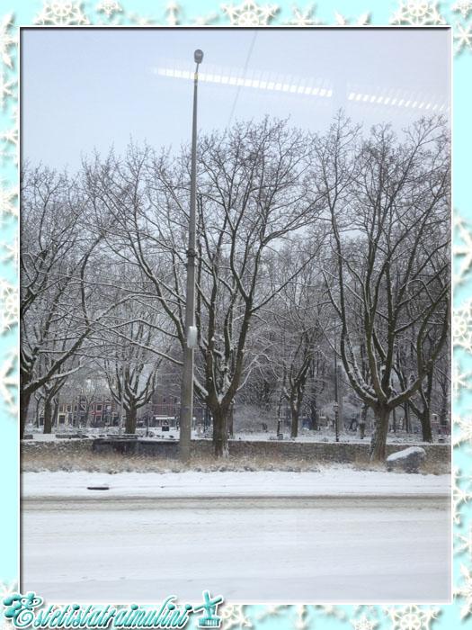 winteriscoming5
