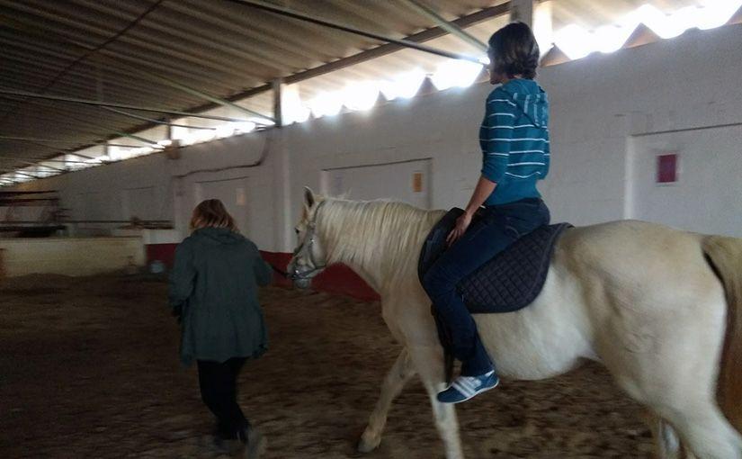 Los mismos caballos, distintos ZenTauros
