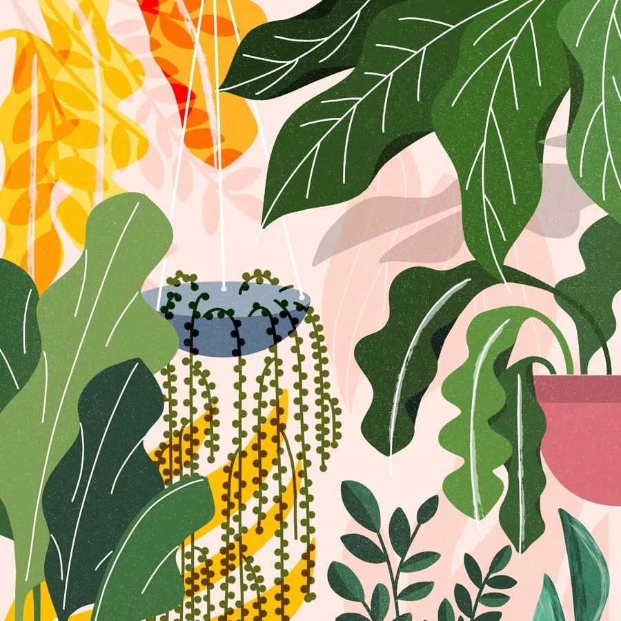 Modern Floral and botanical Illustration By Esther Nariyoshi