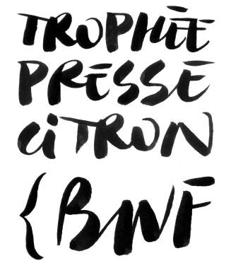 Tests de tracés typographiques pour le Trophée Presse Citron 2017 (Concours national de dessin de presse)