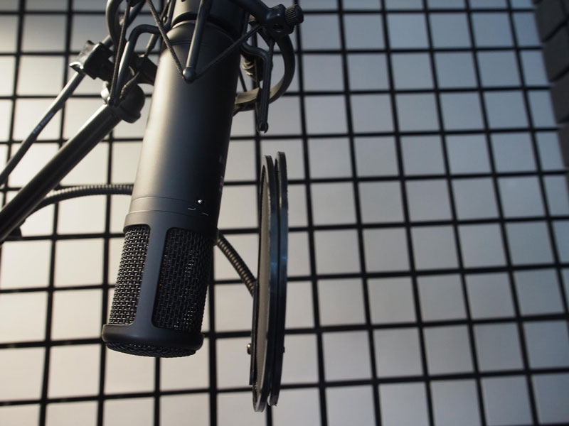 Esther Wane uses an SE2200aii Microphone to provide professional voice over