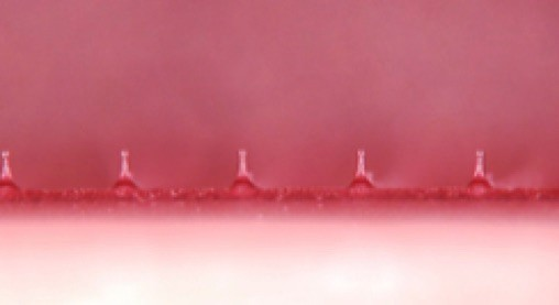 ピンクのマイクロニードルをコスメディ製薬が開発