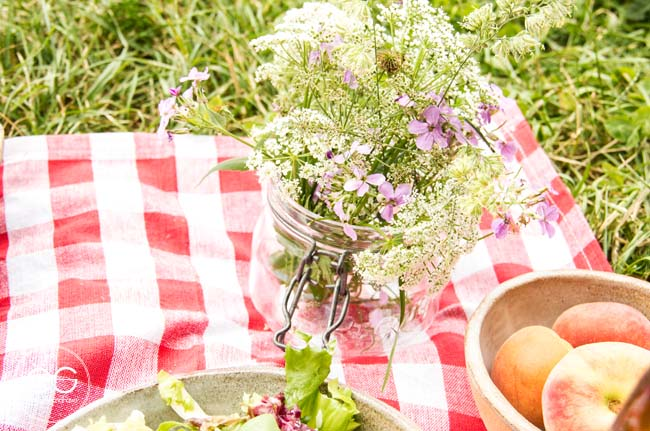 picnic-campo-escandinavo-04