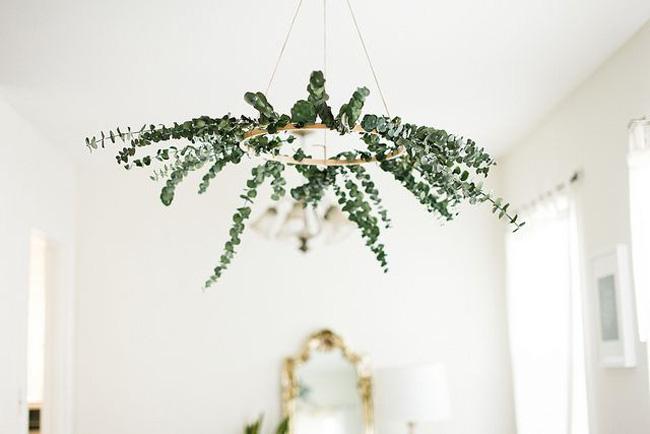 eucalyptus-decor-01