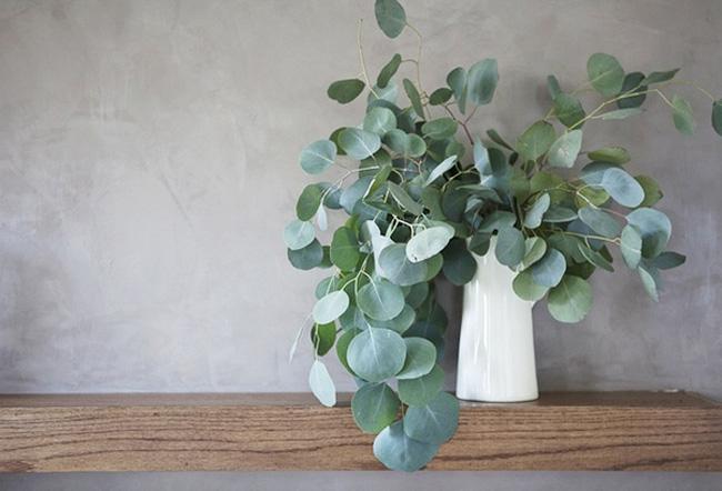 eucalyptus-decor-02