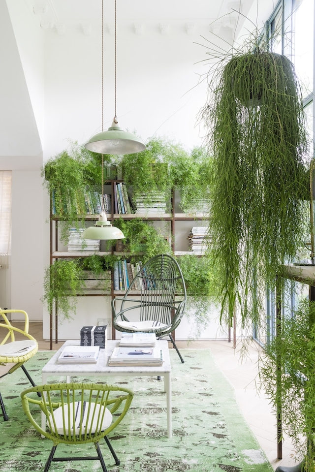 casa-decoracion-verde-03