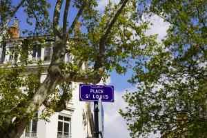 agence immobiliere lyon 7 saint louis achat vente estimation gestion