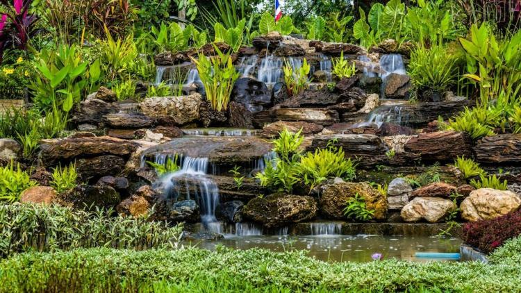 DD Garden Home, 229 Moo 13 Tumbol Buntum Aumphor Muang, Phayao, Thailand (7)