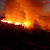 Incendiu la o plantație de salcâmi din Trestiana