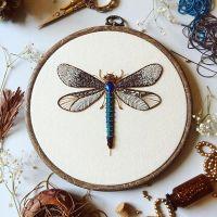 La colección de insectos de Humayrah Poppins