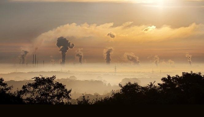 Efectos de la contaminación sobre la salud 0