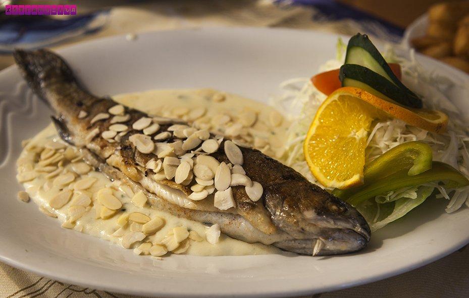 almoco-peixe--bratislava-eslovaquia