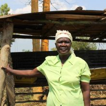 The BeeKeepers: how African women are making history, changing culture, and rebooting their lives.