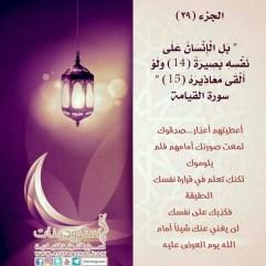 الجزء التاسع والعشرون / مسابقة ربيع قلبي / رمضان 1438