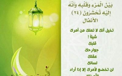 الجزء التاسع / مسابقة ربيع قلبي / رمضان 1438