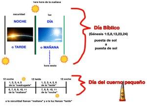 Diferencias entre el día bíblico y el día del cuerno pequeño.