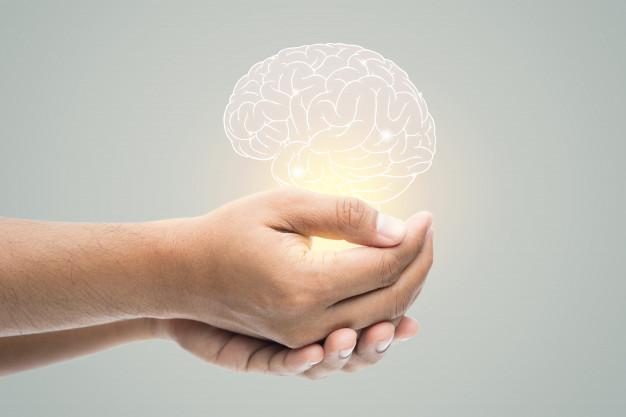 Mentalidad en Automático | Estudio Emprendedor MX