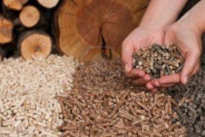 Noticias sobre pellet por estufamania.com