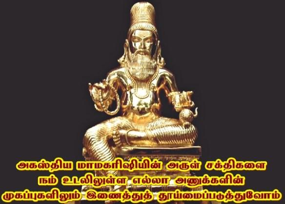 siddhars