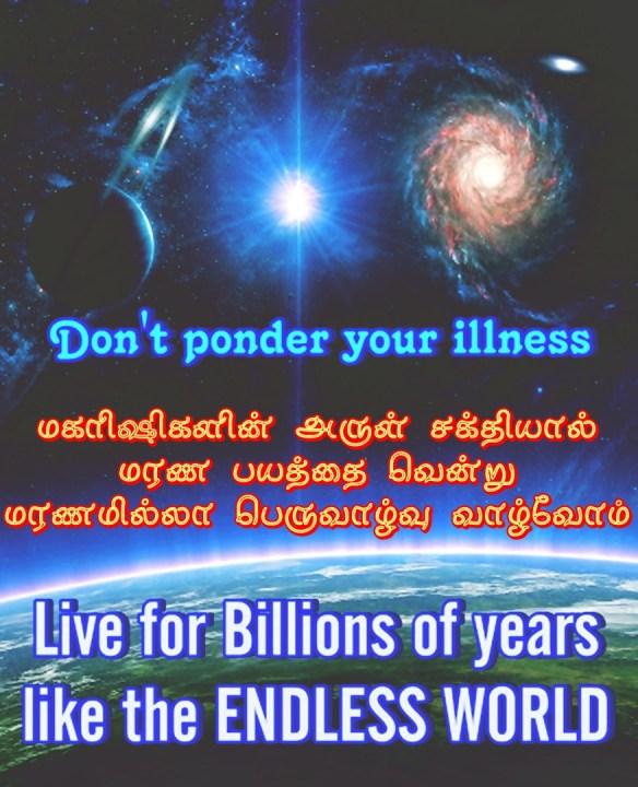 endless world