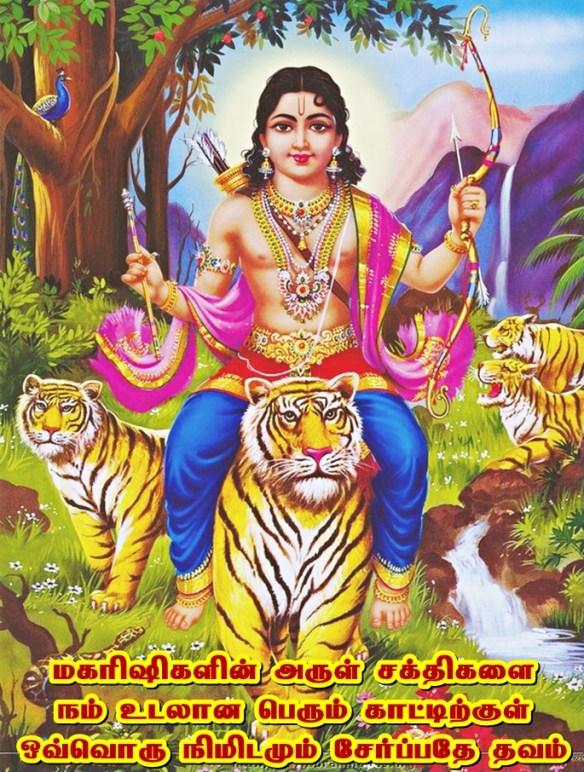 Lord Ayyapa with tiger