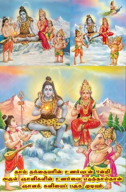 Lord Shiva wisdom fruit