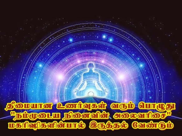 Maharishis frequency