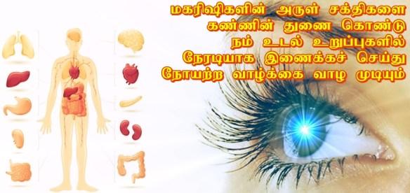 eye sight meditation