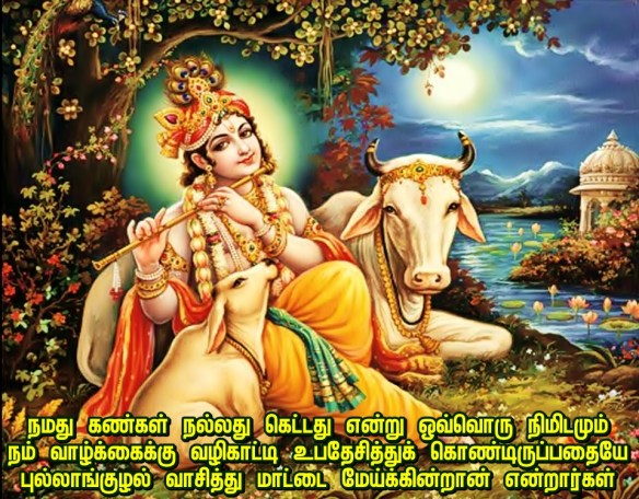 Kannan flute and cow