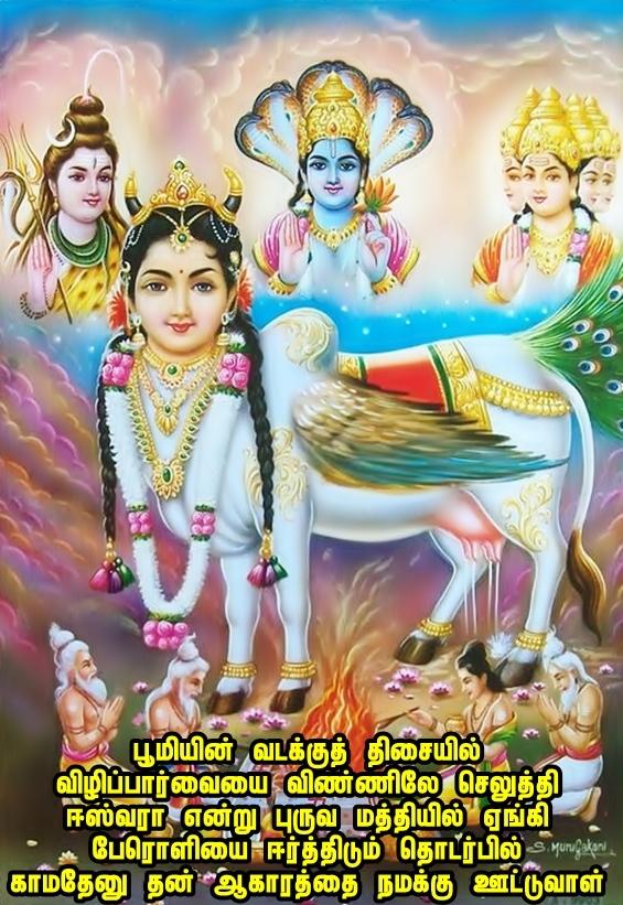 Kamadhenu Nandhini