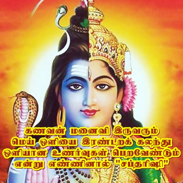 Shiva - ardhanreeswara
