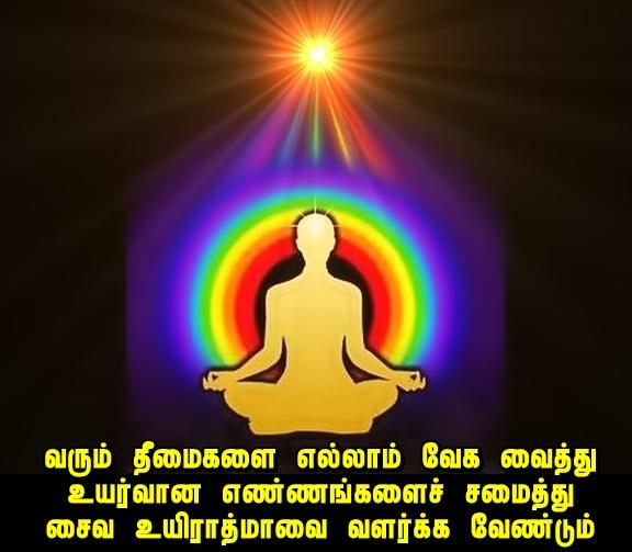 blissful meditation